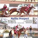 Schnell, Malibu Pospect